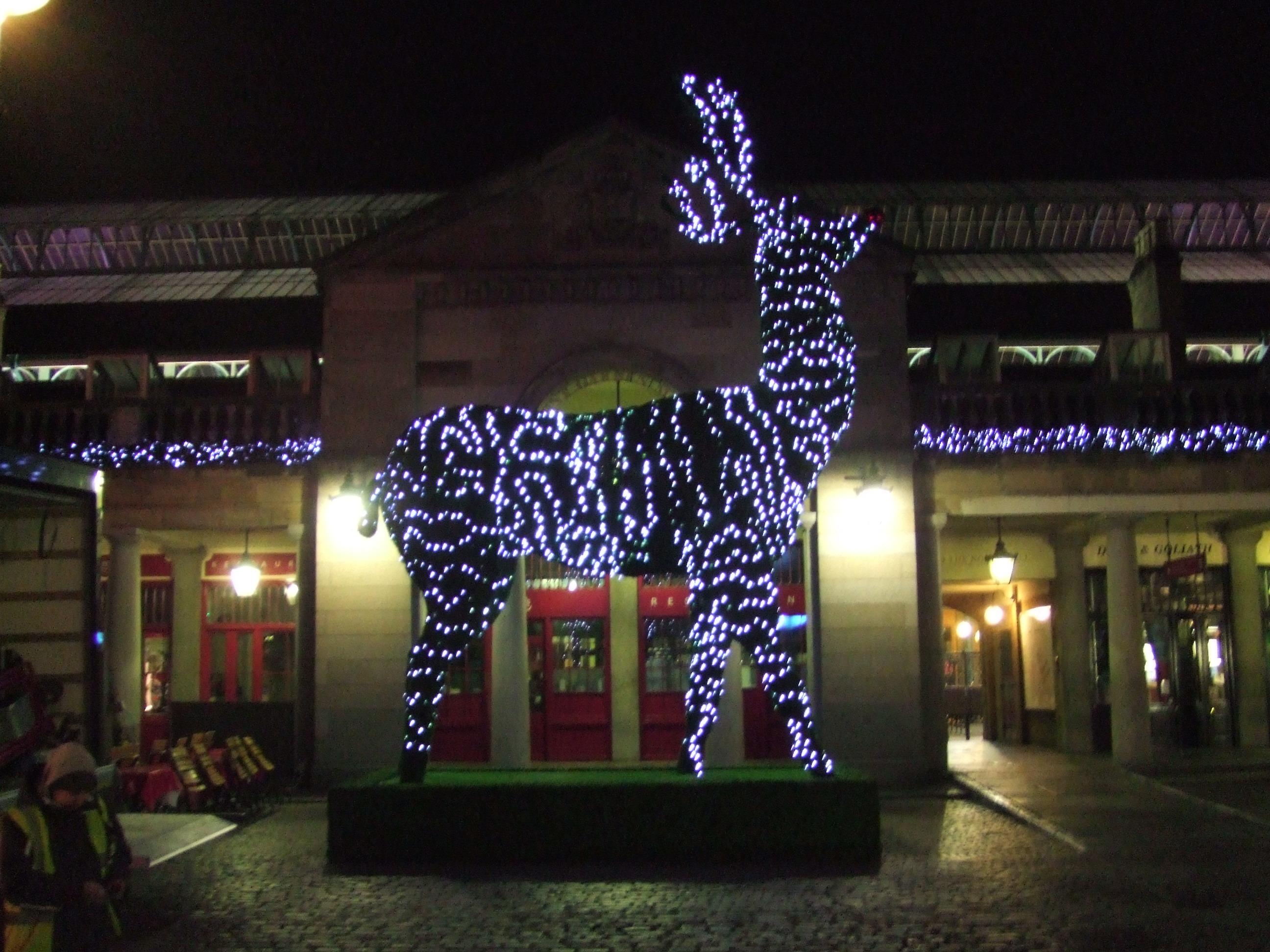 Reindeer in Covent Garden 002